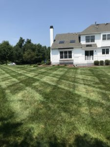 Lawn care services for residential properties