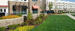 HOA Specialty Landscaping