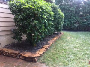 Hardscaping and Landscaping design
