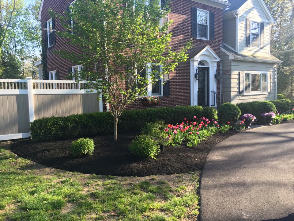 Landscaping and planting services