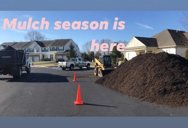 Types of mulch?