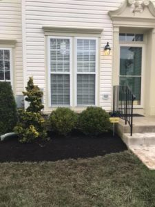 What is mulch used for?
